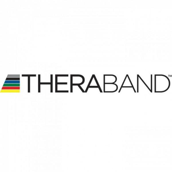 Thera Band bodytrainer vast
